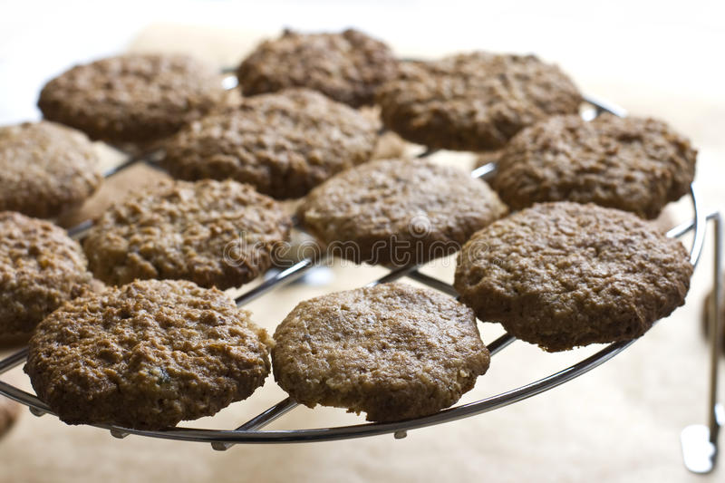 Nut cookies royalty free stock photo