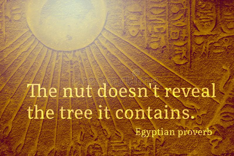 Nut contains Eps. The nut does not reveal the tree it contains - ancient Egyptian Proverb citation royalty free stock photography