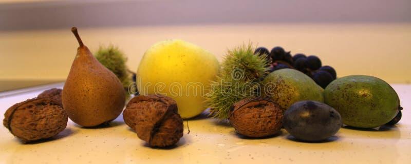 Nut plum chestnut apple pear grapes fruit stock photos