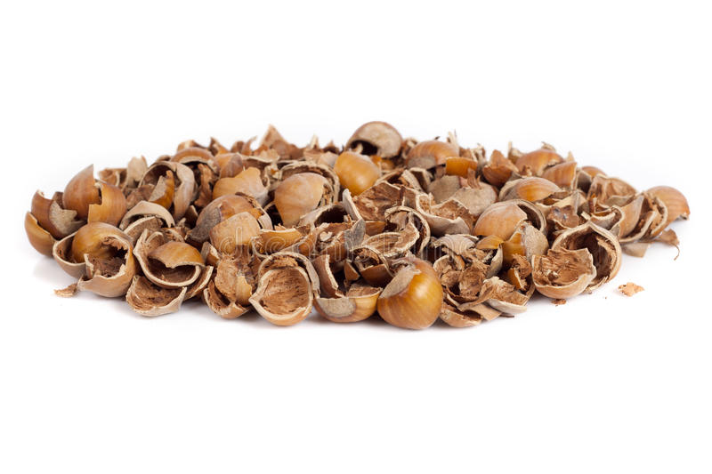 Download Nut shells stock photo. Image of element, nutrition, nutshell - 21888718