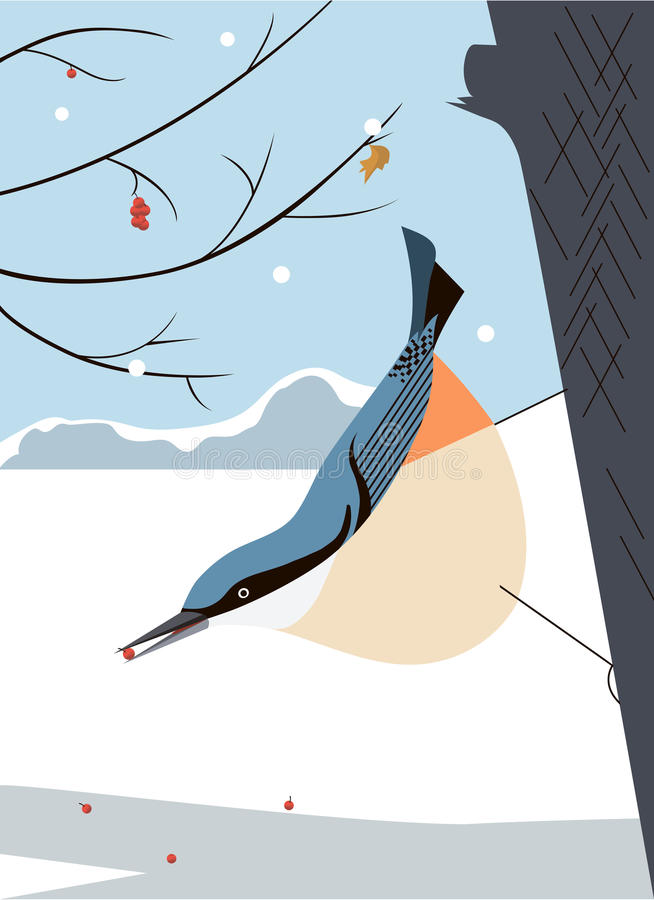 Nuthatch in de boom vector illustratie