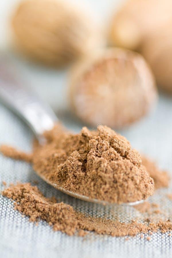 Download Nutmeg stock image. Image of powder, whole, close, seasoning - 27110669