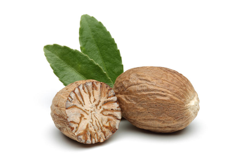 Nutmeg obrazy royalty free