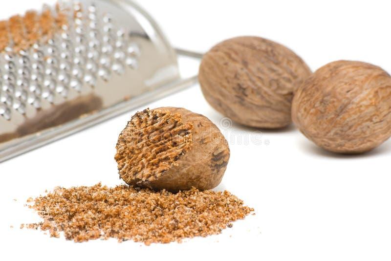 Nutmeg with grinder royalty free stock image
