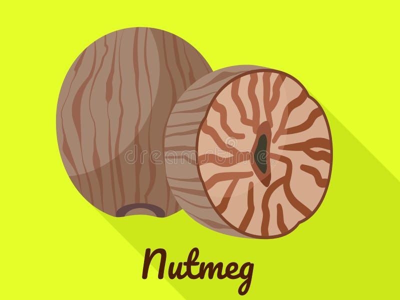 Nutmeg icon, flat style. Nutmeg icon. Flat illustration of nutmeg vector icon for web design vector illustration