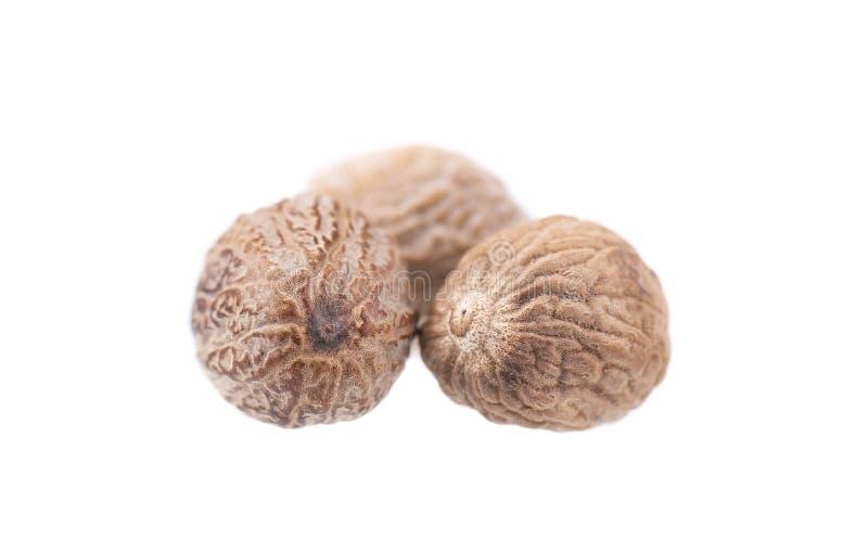 Nutmeg isolé sur fond blanc Deux mugueuses entières secs Chemin d'accès de découpage image libre de droits
