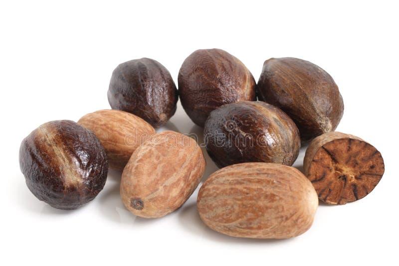 Nutmeg image libre de droits