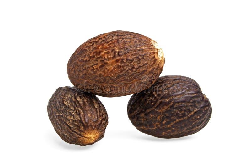 Nutmeg sur fond blanc image stock