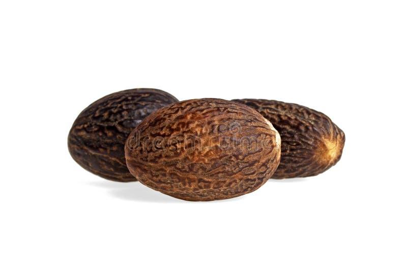 Nutmeg sur fond blanc photo stock