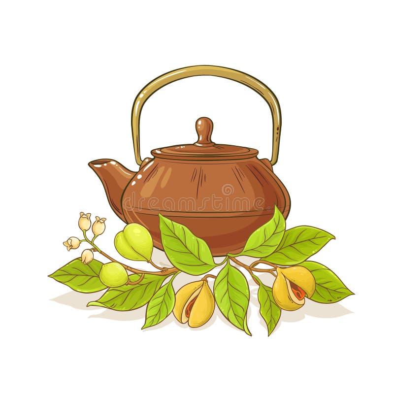 Nutmeg tea illustration. Nutmeg tea in teapot illustration on white background royalty free illustration