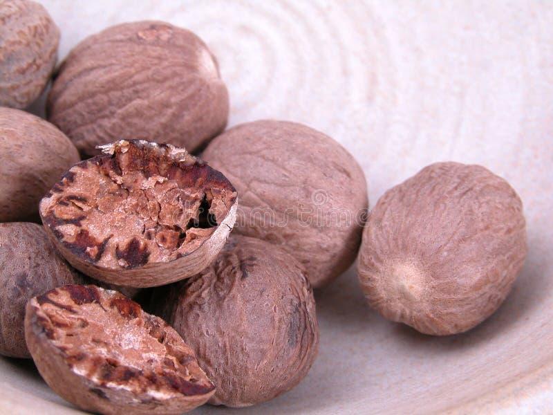 Download Nutmegs fotografering för bildbyråer. Bild av kernel, nutmegs - 508679