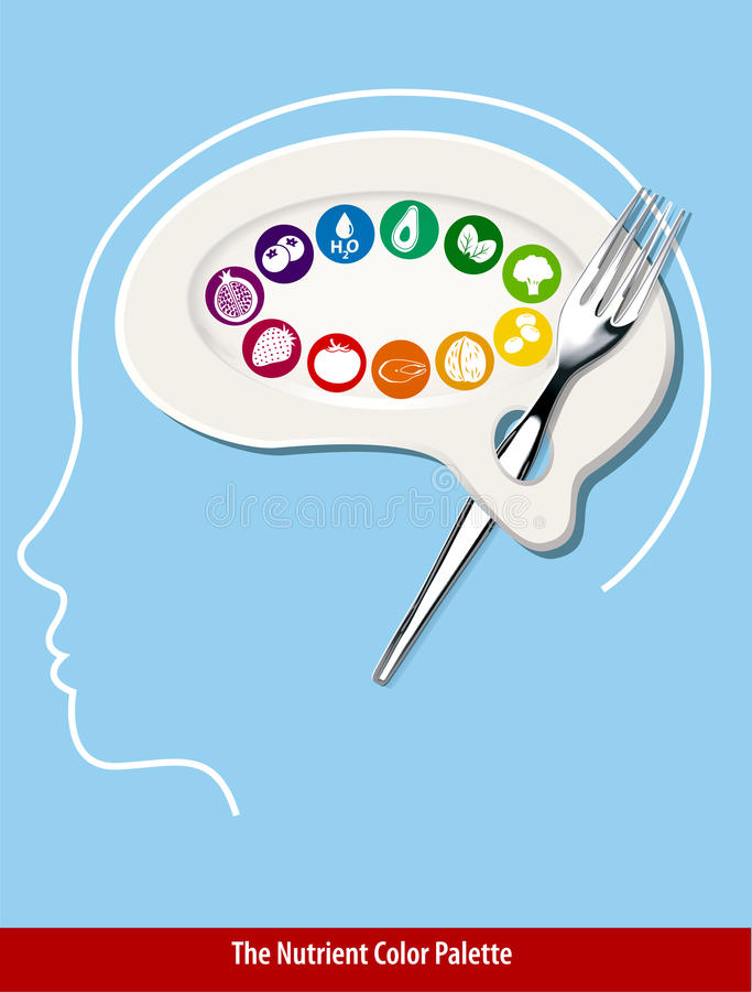 Download The Nutrient Color Palette Brain Shape Stock Vector