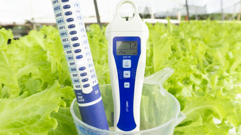 Nutrient Meter and pH meter in Metric Cup on Green salad vegetables background. royalty free stock image