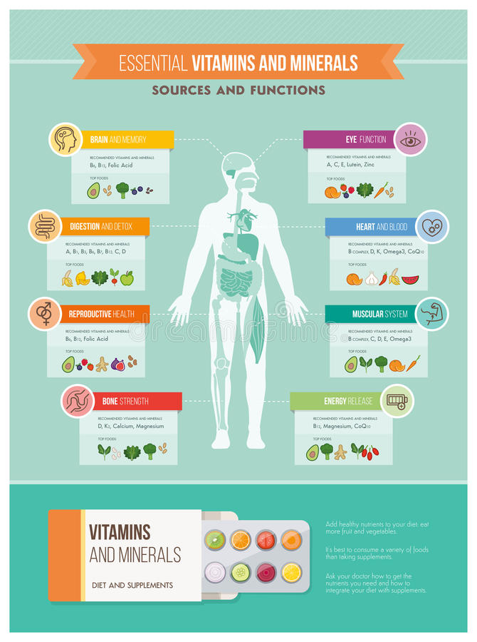 Nutrition and health. Nutrition, vitamins and health infographics: human body, organs, vitamins benefits and food sources infographic