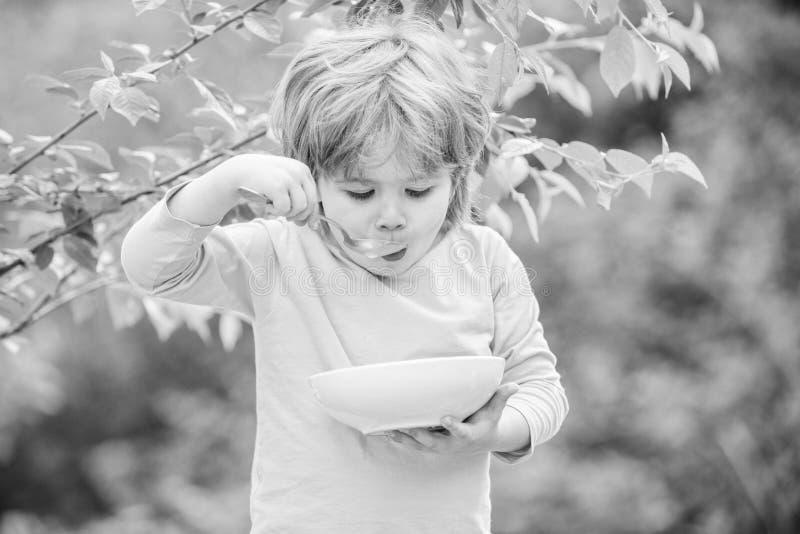 Nutrition pour des enfants Peu gar?on d'enfant en bas ?ge mangent du gruau dehors Avoir le grand app?tit Nutrition organique Sain image stock