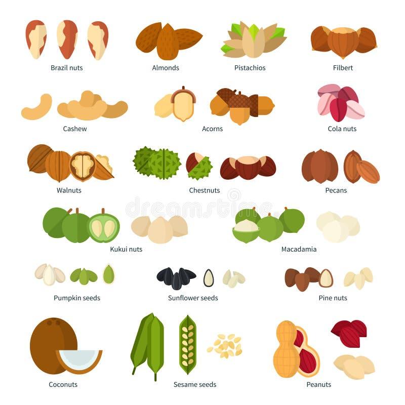 Nuts собрание иллюстрация вектора