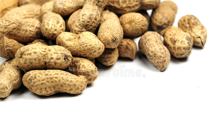 Download Nuts stock image. Image of earth, snack, food, white - 13061269
