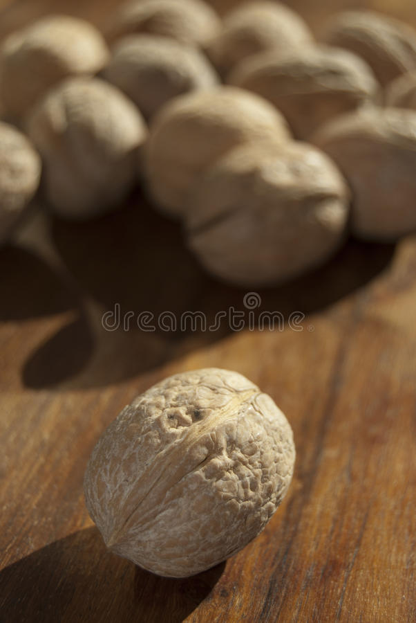 Download Nuts stock photo. Image of taste, appetizer, diet, nuts - 16921816