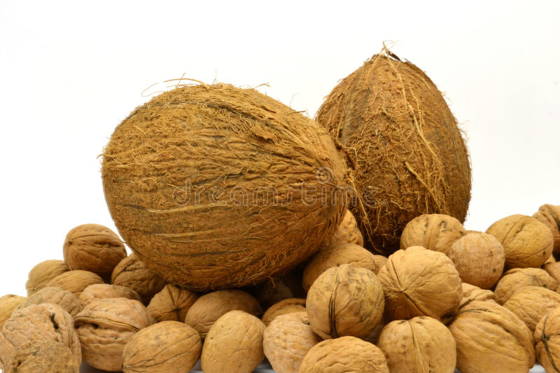 Download Nuts stock photo. Image of coco, heap, nuts, brown, coconuts - 22316654