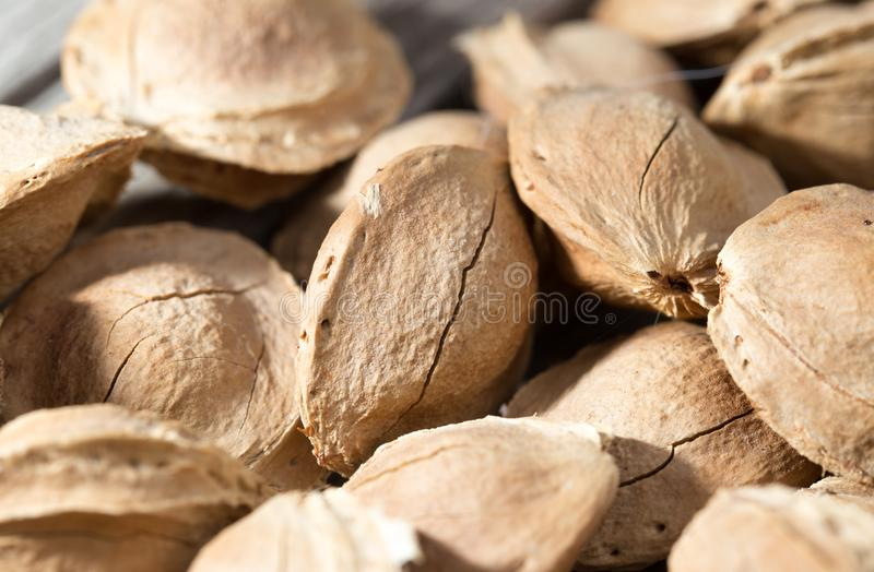 Nuts from apricots as background stock image