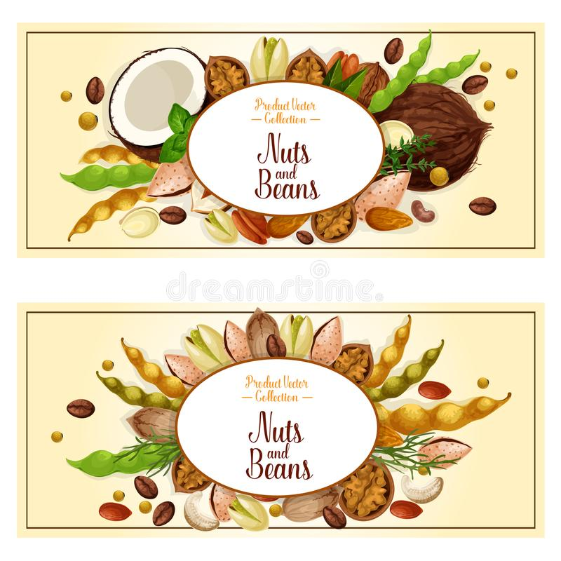 Vector banners of nuts and fruit kernels. Nuts banners set. Vector fruit kernels and food plant seeds of coconut, cashew or almond and coffee beans, walnut or vector illustration