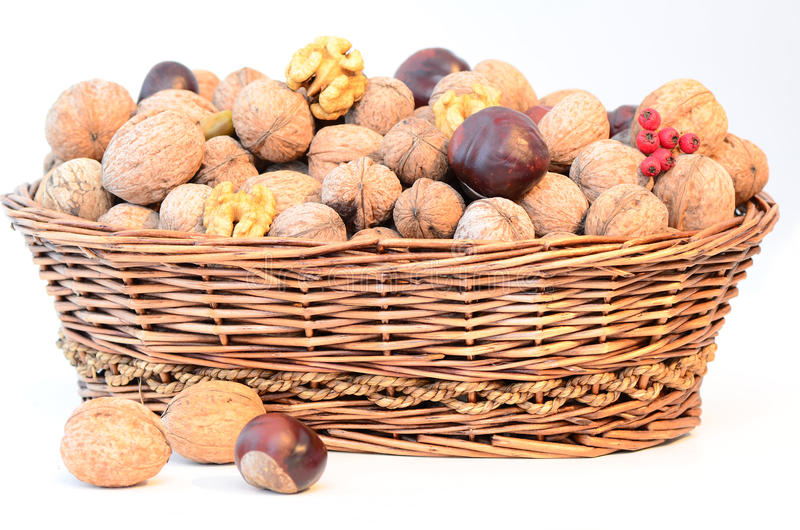 Download Nuts basket stock photo. Image of nature, natural, diet - 27185352