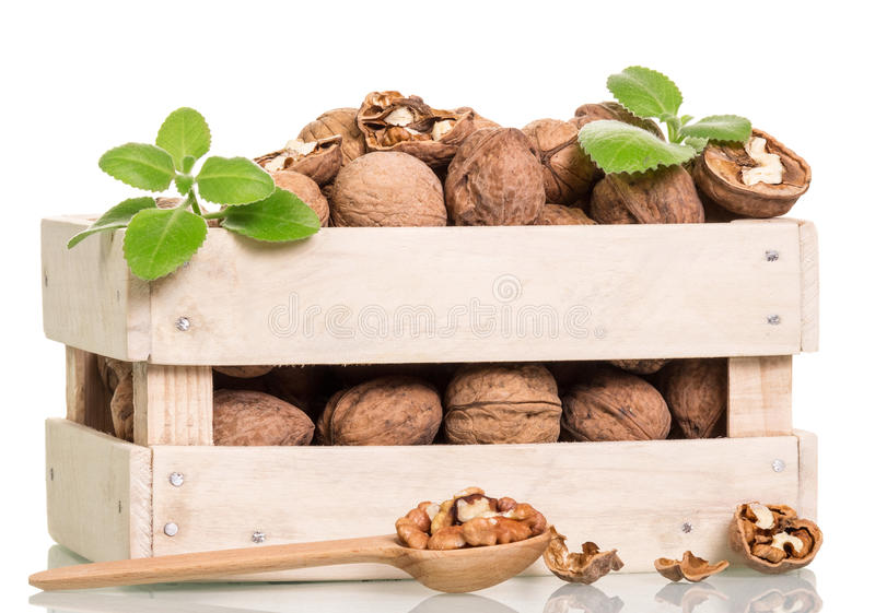 Nuts in box and spoon isolated royalty free stock photos