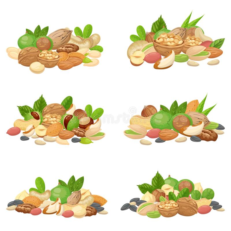 Nuts bunch. Fruit kernels, dried almond nut and cooking seeds isolated vector set. Nuts bunch. Fruit kernels, dried almond nut and cooking seeds. Cellulose food vector illustration