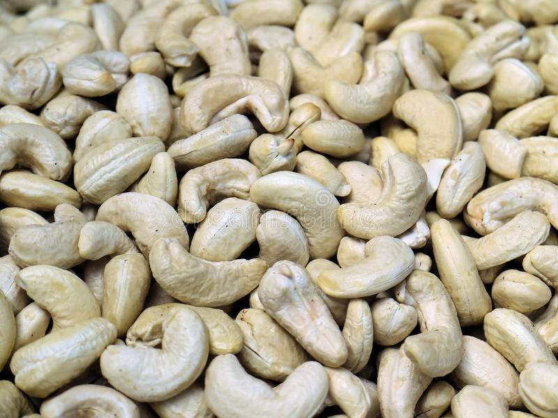 Download Nuts cashew, stock image. Image of dessert, cleared, cashew - 25421373