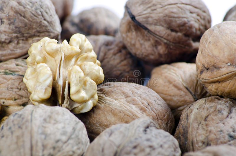 Download Nuts in closed frame stock photo. Image of fruit, food - 27494796