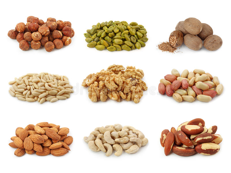 Download Nuts collection stock photo. Image of fatty, nuts, cashew - 18439504