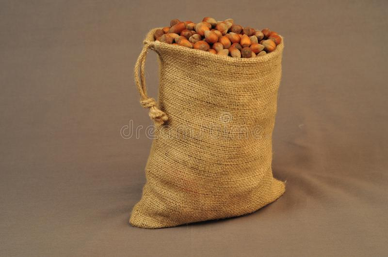 Nuts, insulated bag on a dark background stock image