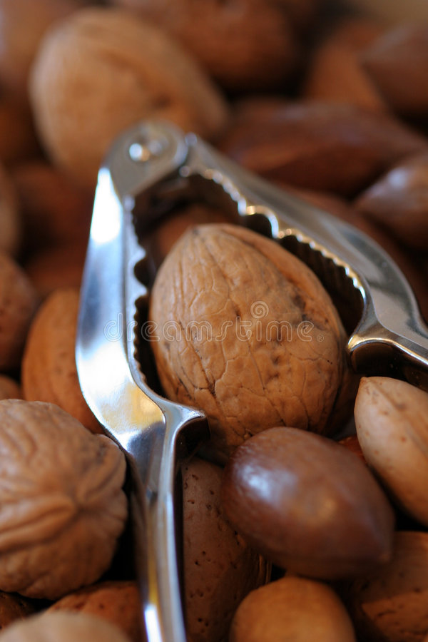 Nuts and Cracker stock images