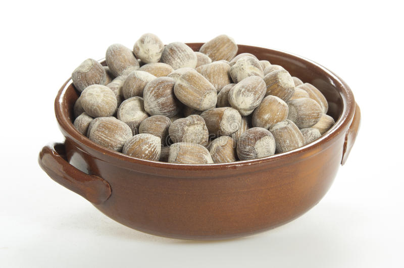 Nuts in a cup royalty free stock photography