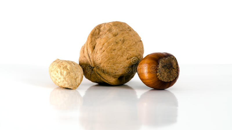 Nuts. The different kinds of nuts. Isolated on a white background royalty free stock photography