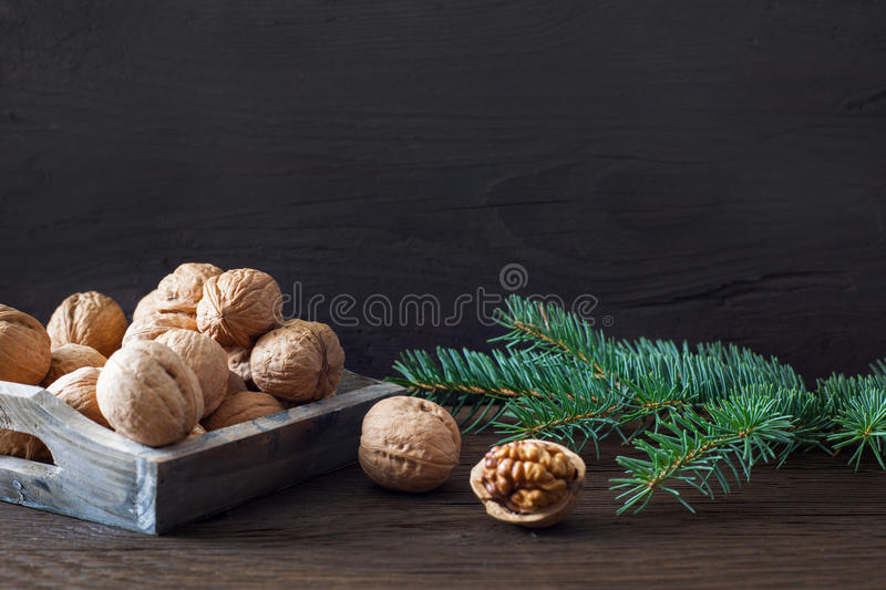 Download Nuts and fir stock photo. Image of advent, space, whole - 26449648