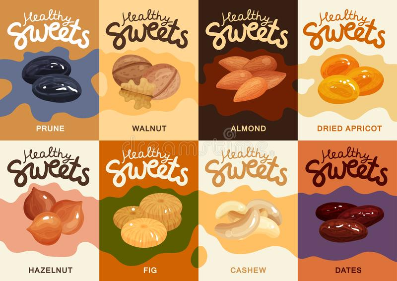 Nuts Flat Cards Set vector illustration