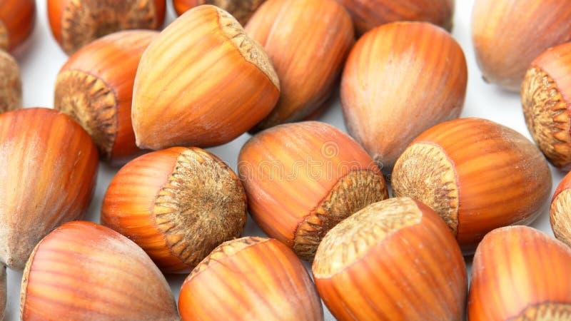 Nuts Haselnüße schließen oben lizenzfreies stockfoto