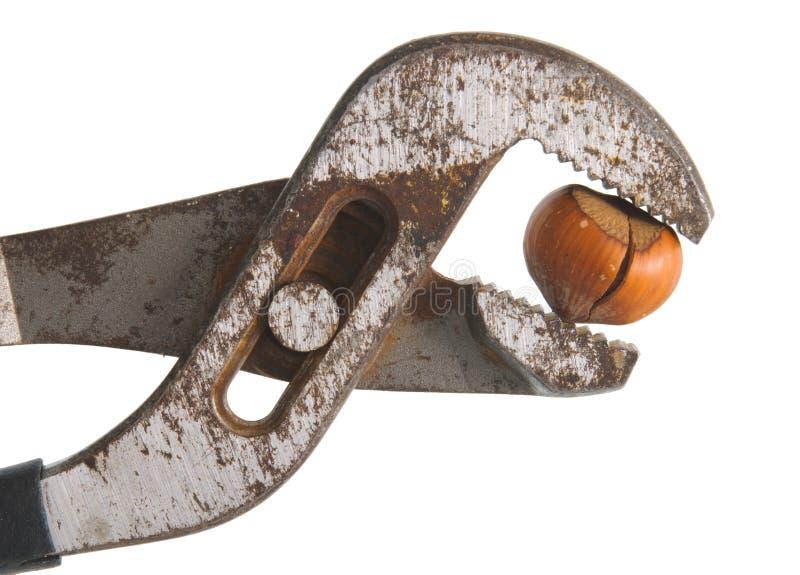 Download Nuts, Hazelnut Channel Locks Stock Photo - Image: 23348450