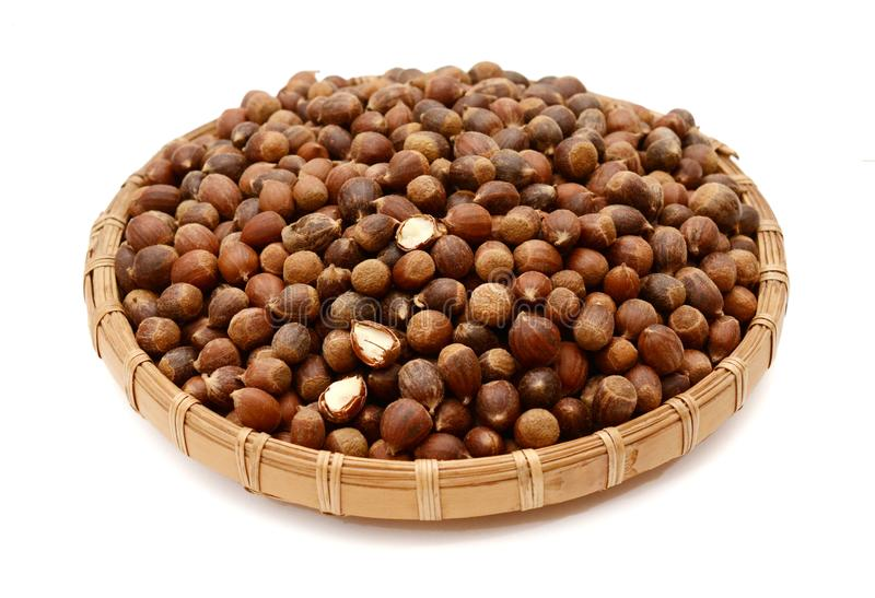 Forest nuts hazelnuts isolated. royalty free stock photos