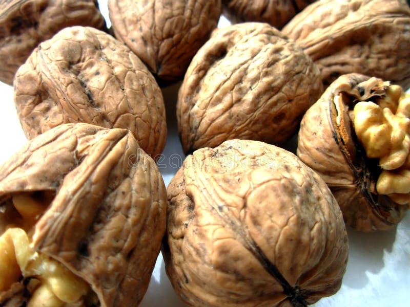 Nuts II stock photos
