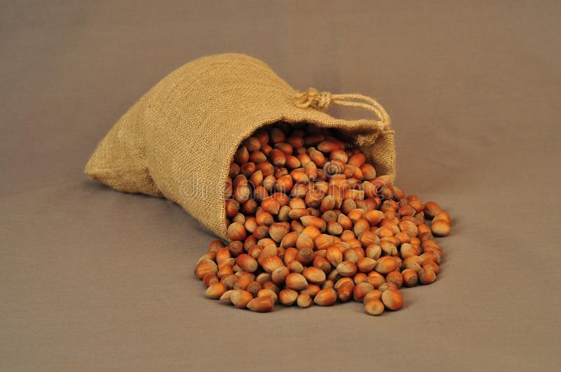 Nuts, insulated bag on a dark background stock photo