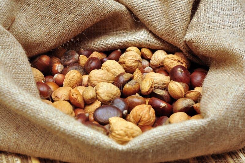 Nuts In Jute Bag Stock Image