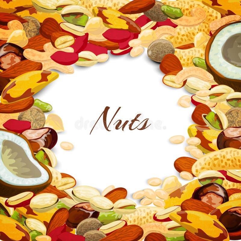 Nuts Mix Background. Nuts mix with coconut chestnut nutmeg peanut vector illustration vector illustration