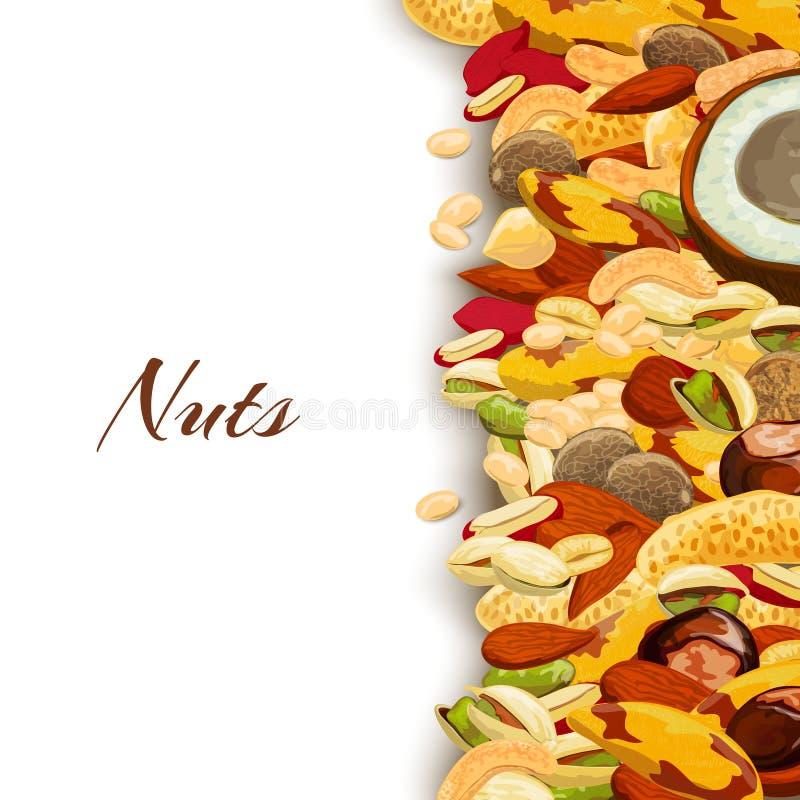 Nuts Mix Background. Nuts mix with peanut hazelnut pistachio coconut background vector illustration vector illustration