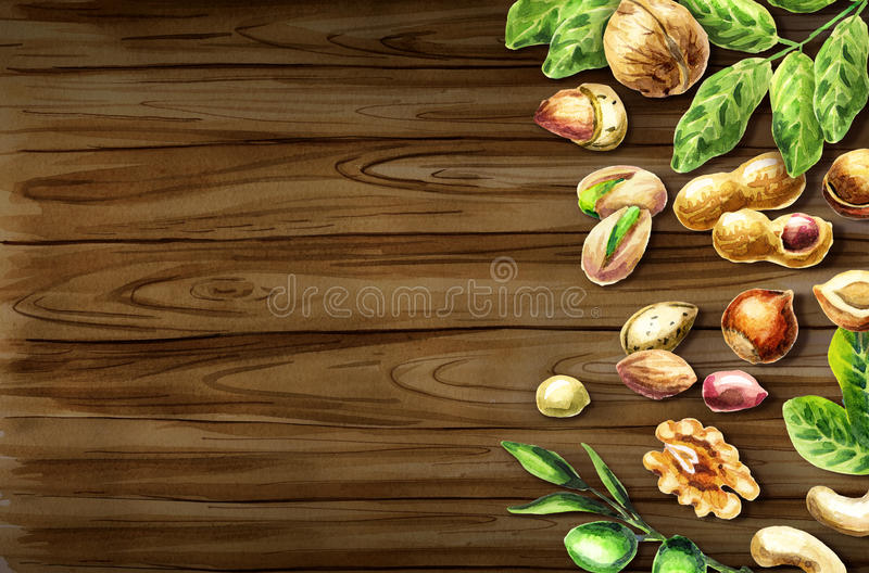 Nuts mix top view on the border. Natural food. Watercolor hand-drawn background. Nuts mix top view on the border. Natural organic food. Watercolor hand-drawn royalty free illustration