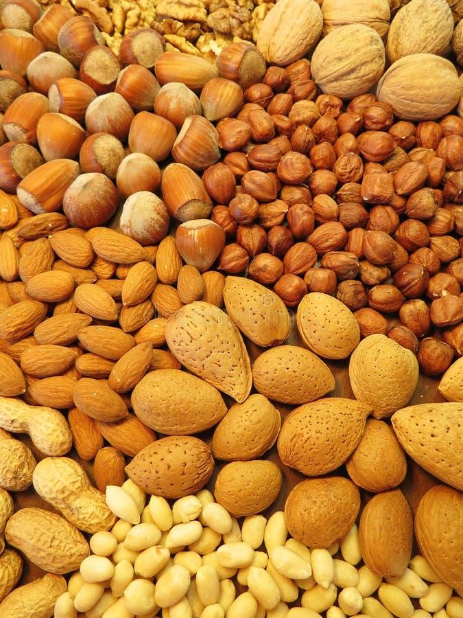 Nuts Muster stockbild