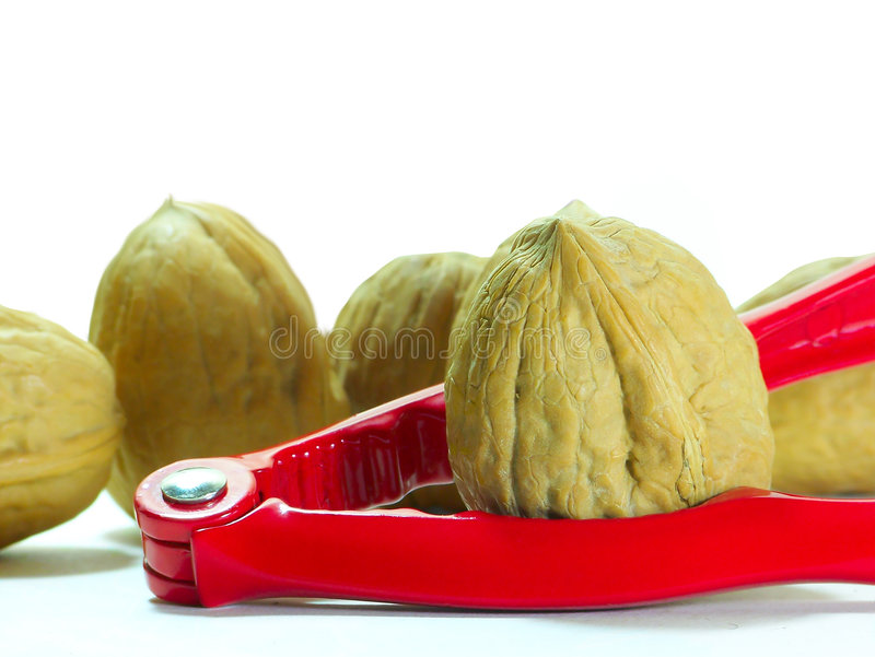 Nuts and Nutcracker stock photography