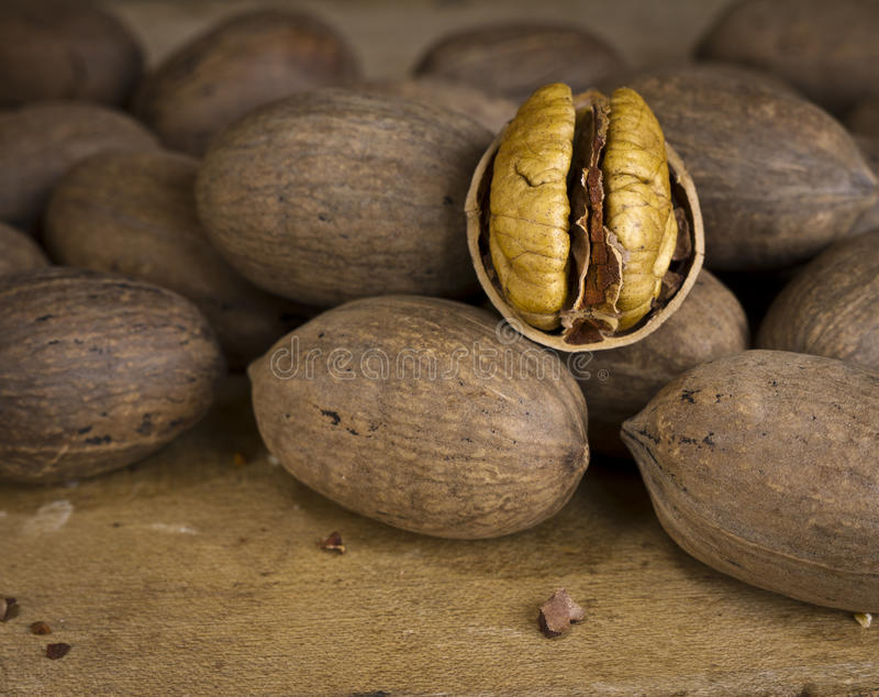 Download Nuts - Pecans stock image. Image of brown, food, omega - 22723997