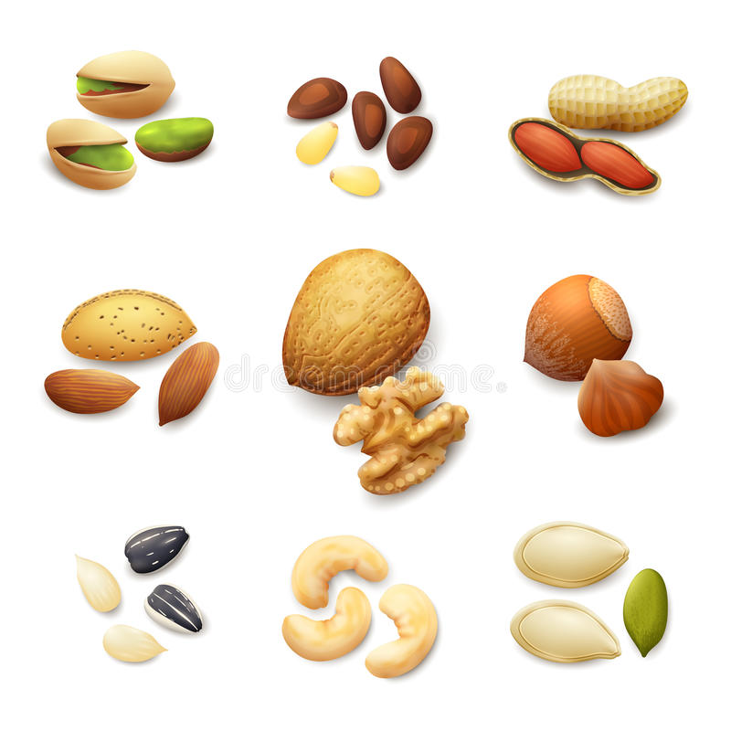 Free Nuts Realistic Set Stock Image - 54315771